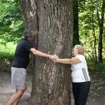 Ясная поляна - Имение Л.Н. Толстого - дерево любви