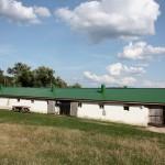 Ясная поляна - Имение Л.Н. Толстого - конюшни