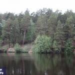 Рачейское лесничество. Село Смолькино. Самараская обл.