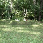 Ясная поляна - Имение Л.Н. Толстого - могила Л.Н. Толстого